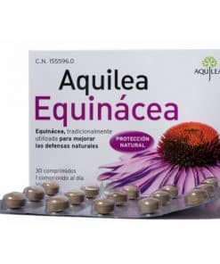 Aquilea Equinacea