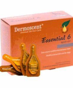 Comprar Dermoscent Essential Perros 0-10 Kg 4 Pipetas