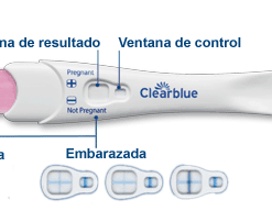 Prueba De Embarazo