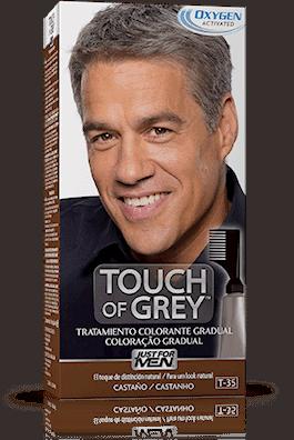 Comprar Touch Of Grey Gel Colorante Castaño 40 G